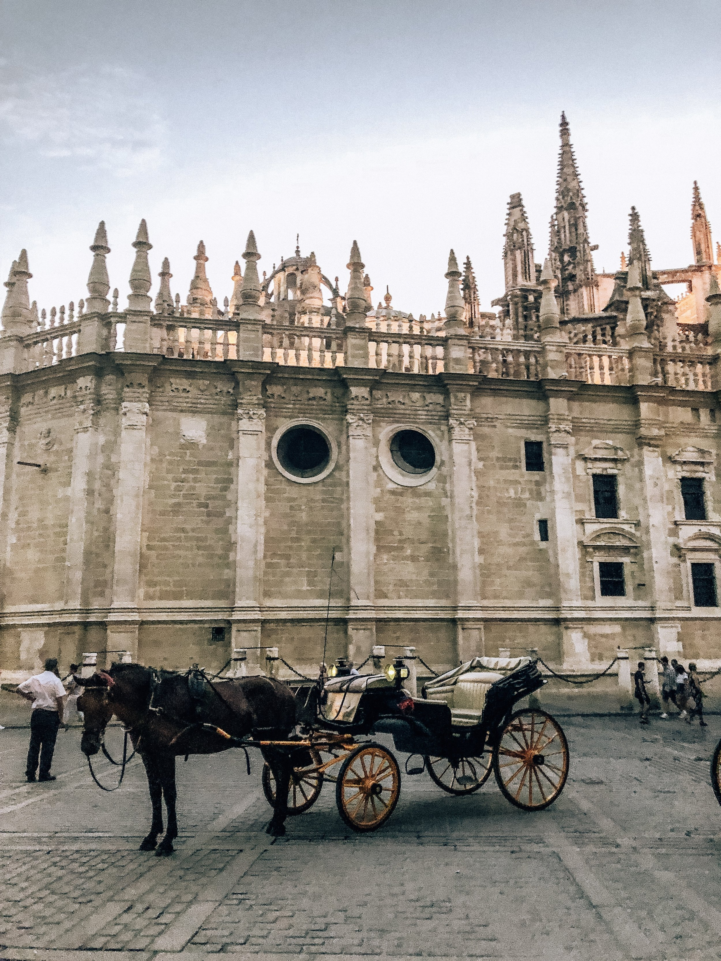 Horse carriages by the Cathedral de Sevilla