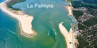 la Palmyre.jpg