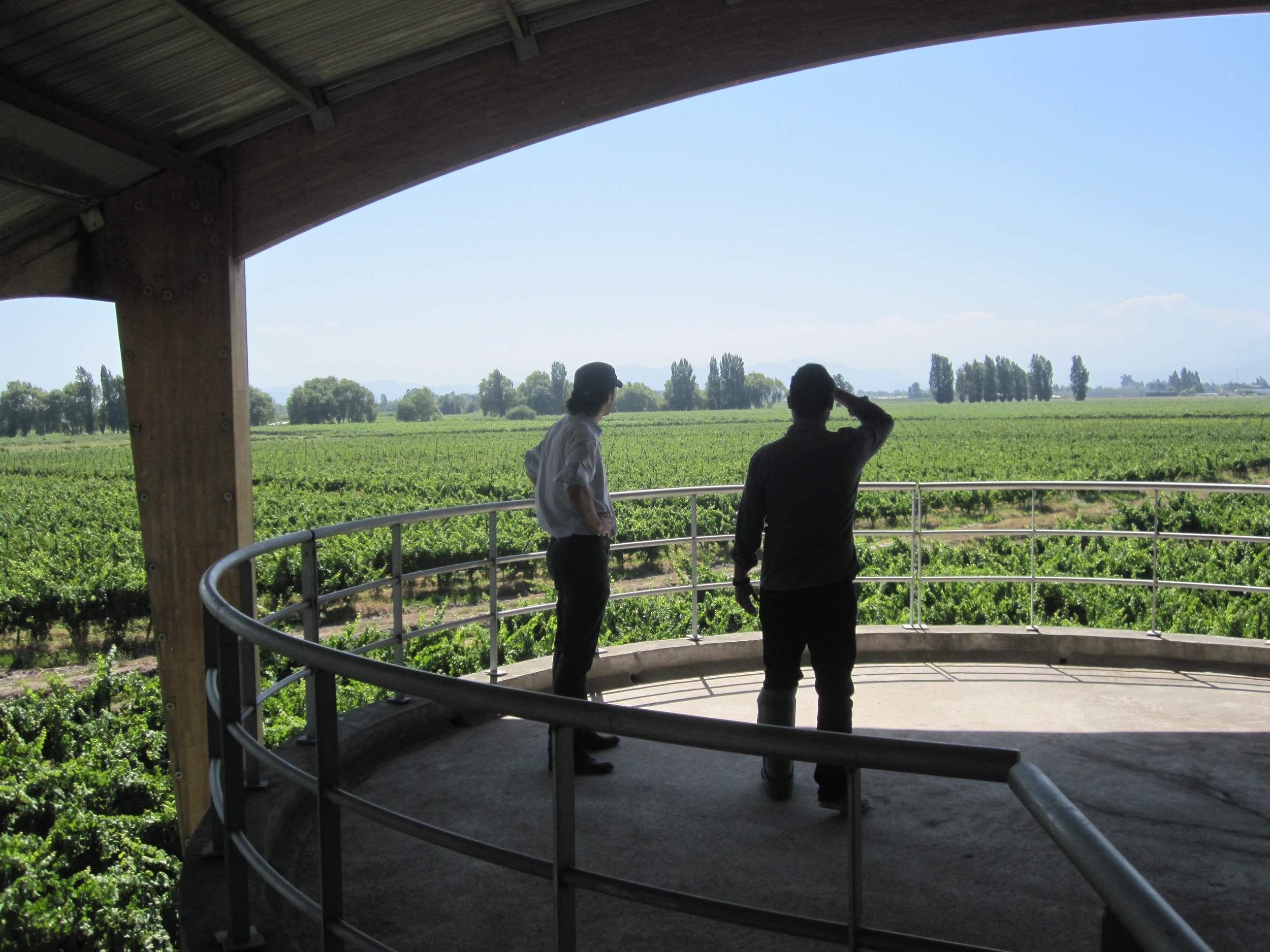 Julio (right) in early 2015 visiting the Alta Cima winery, a family-run operation in Curicó, Chile.