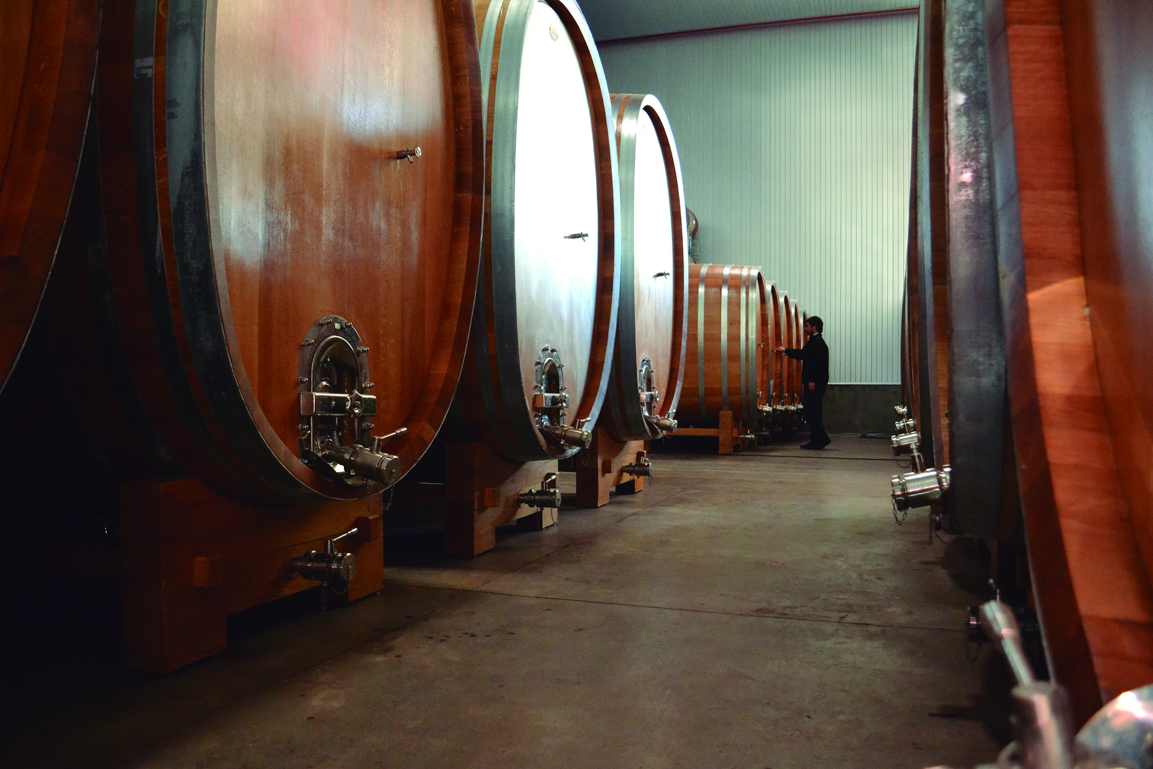 Those things are huge! Giant oak barrels in the winery