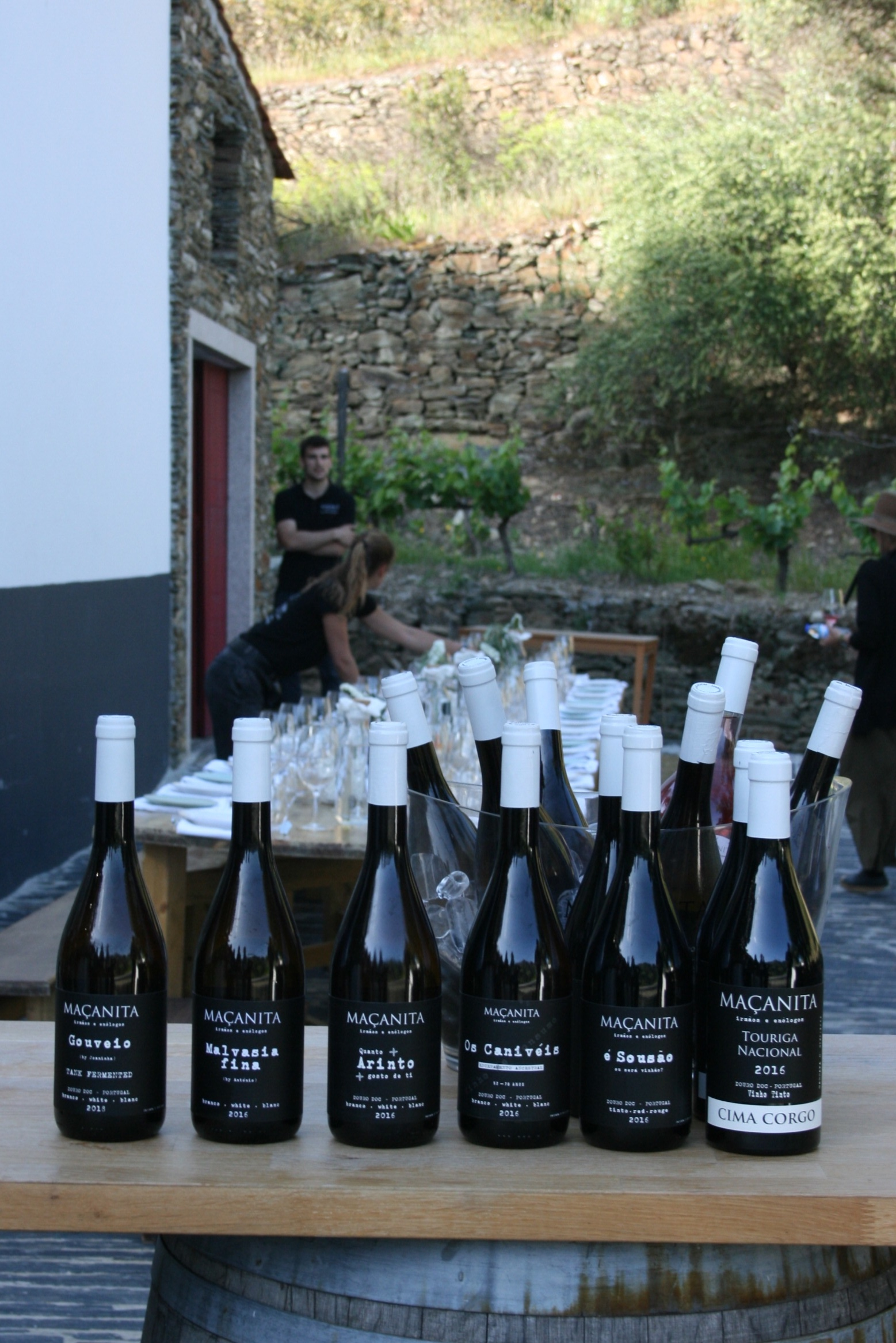 Macanitas winery in Douro Valley.