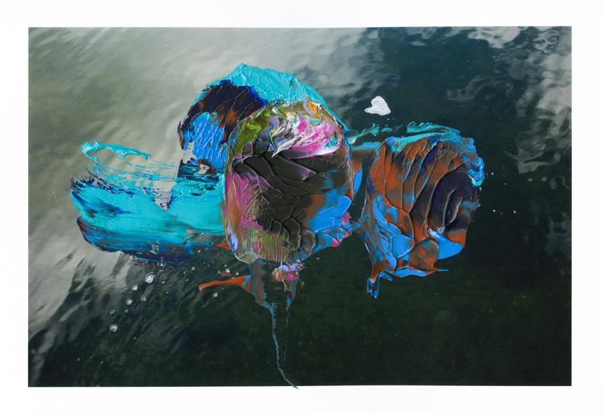 Waterlily006.jpg