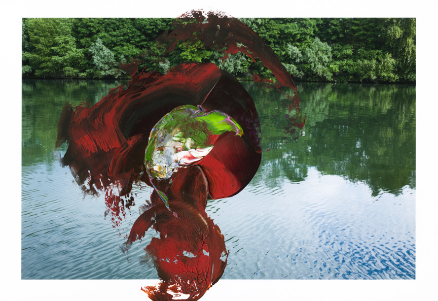 Waterlily007.jpg