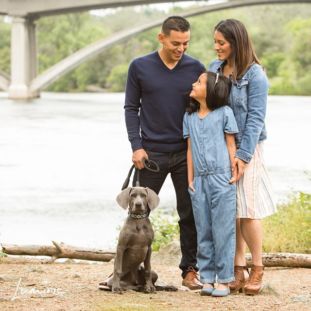 Their dogs name was Frank. Frank Sinatra.⠀ .⁣⠀ .⁣⠀ .⁣⠀ #HistoricFolsom #VisitFolsom #FolsomPhotographer #RosevillePhotographer #RocklinPhotographer #TahoePhotographer #GranitBayPhotographer #CaliforniaPhotographer #FolsomFamilyPhotographer #SacramentoPhotographer #makemoments #familysession #childrenphotography #lifestylephotography #watchthisinstagood #holdthemoments #familyphotography #familyphotographers #motherhoodisdarling #teammotherly #igmotherhood #clickinmoms #nothingisordinary #thehappynow #mozimag #candidchildhood #familyphotos #folsomfamilyphotographer #folsompowerhouse⁣⠀