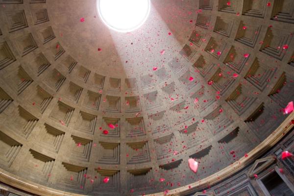 Pantheon petals.jpg