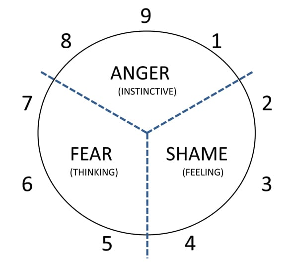The driving emotion and source of reaction of each triad of the Enneagram.