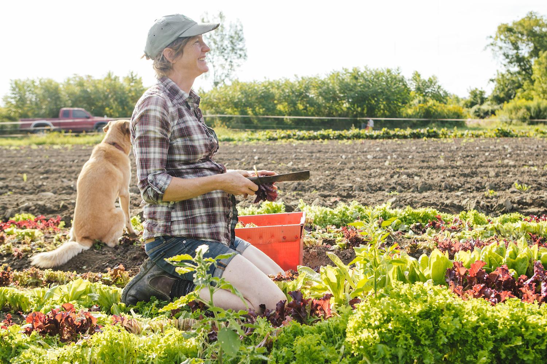 Hilary Martin - Diggers' Mirth Collective Farm