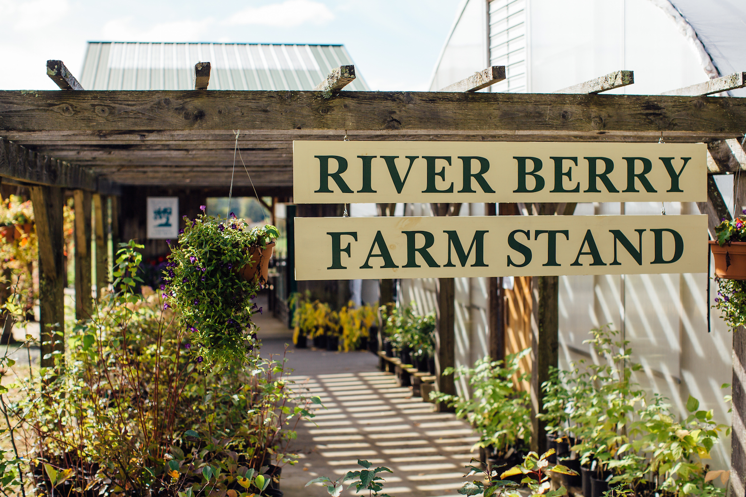 River Berry Farm Stand Photo.jpg