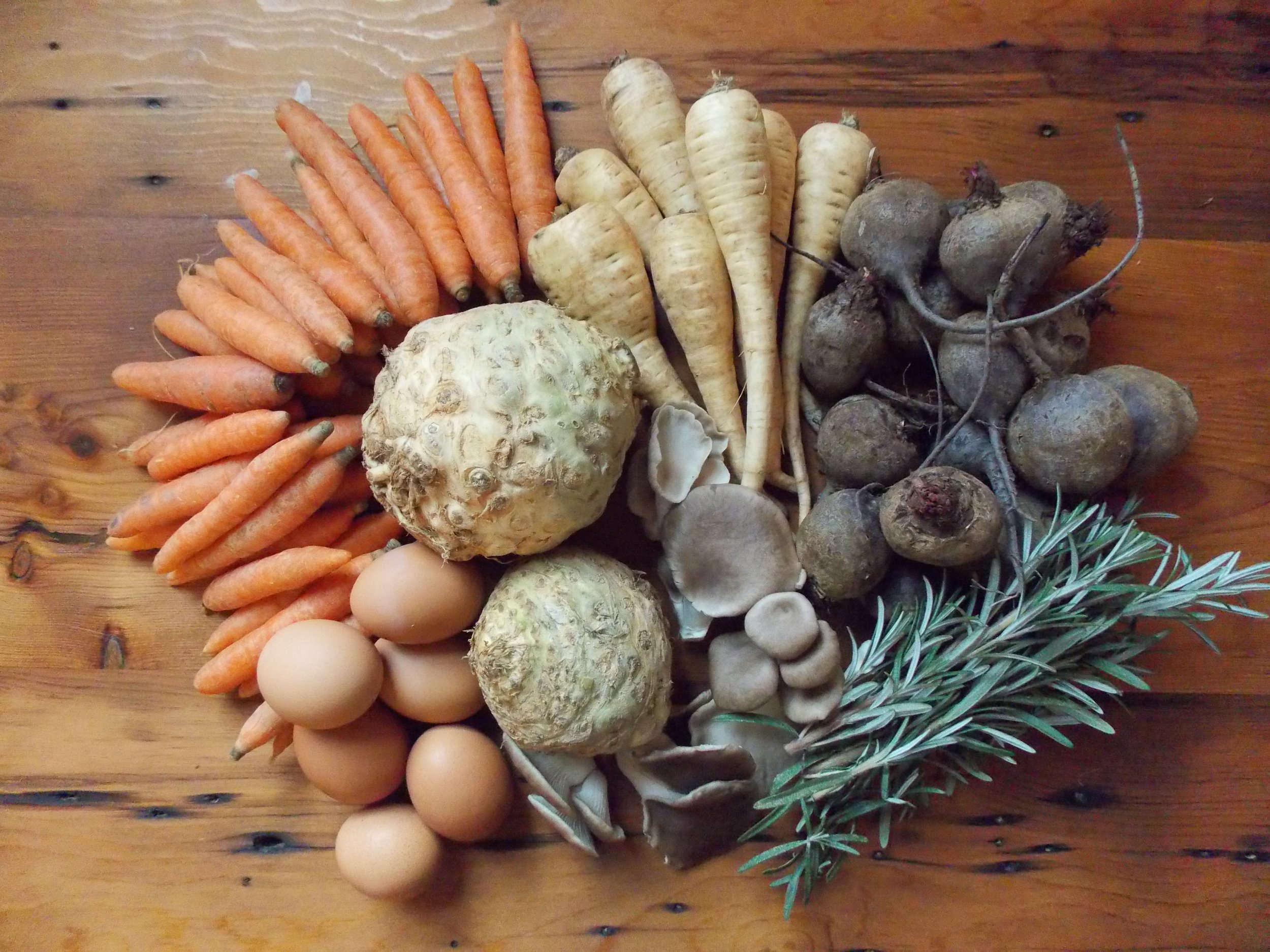 Vegetables, herbs, mushrooms, and eggs will be featured in our Spring Season Vermont Vegetable Package