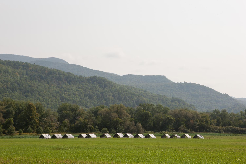 Pastures at Maple Wind Farm