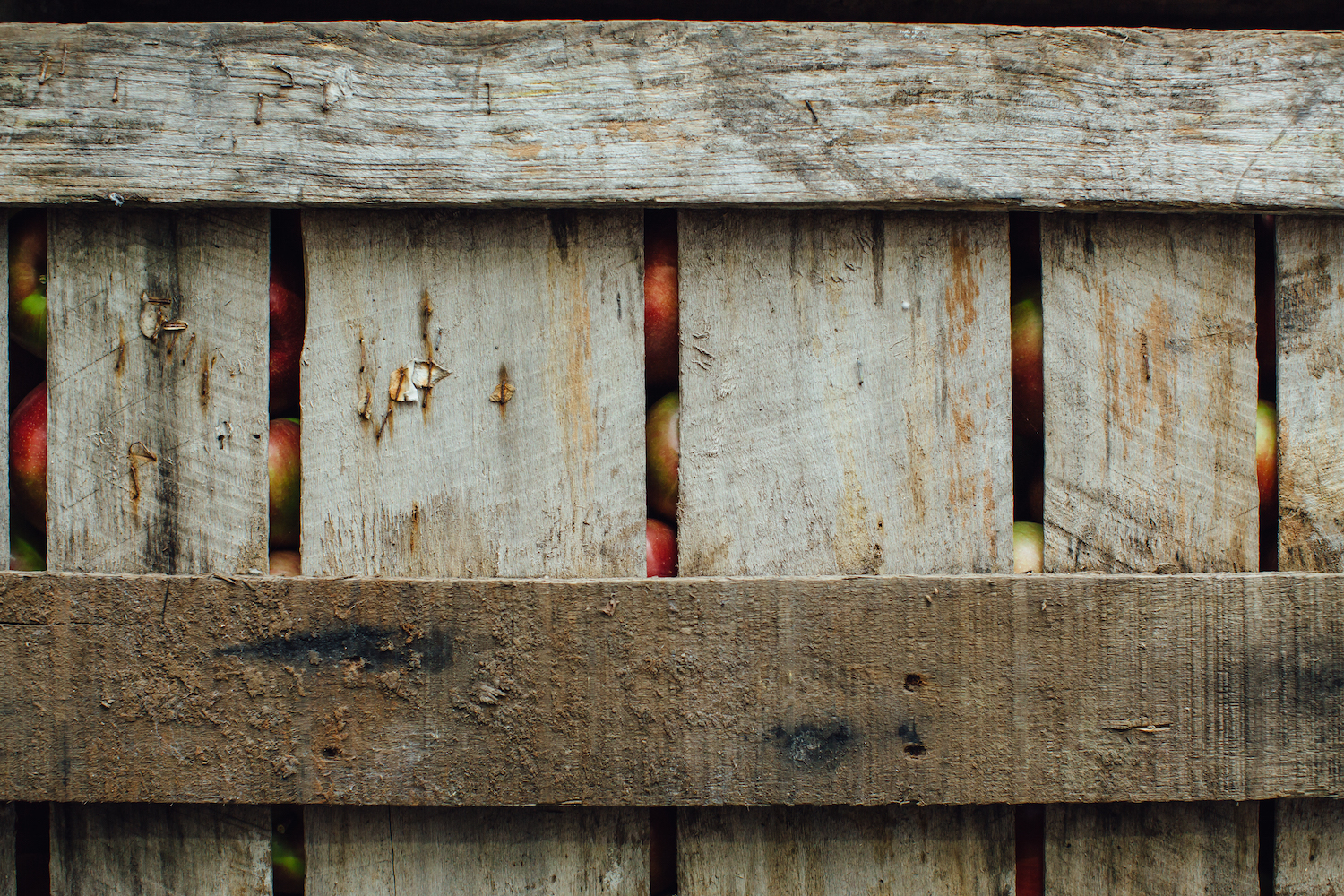 Apple Crates at Champlain Orchards