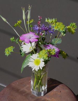Stray Cat Flower Farm Bouquet