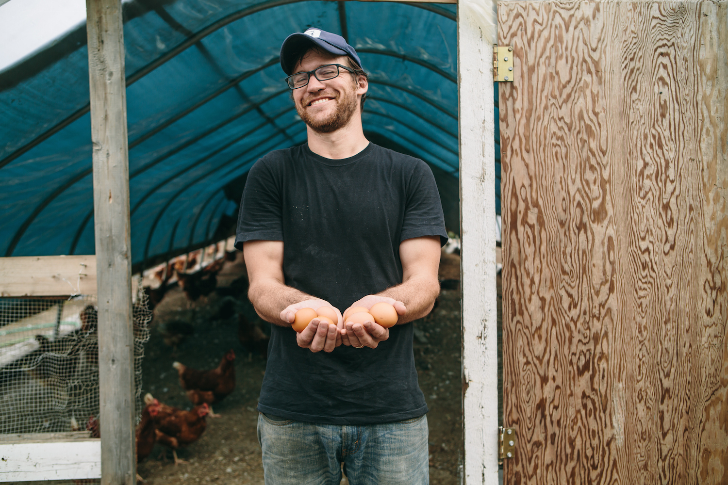 Ben Butterfield collecting pasture-raised eggs from Besteyfield Farm's laying hens