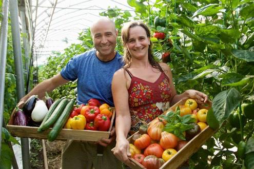 organic-agriculture.jpg