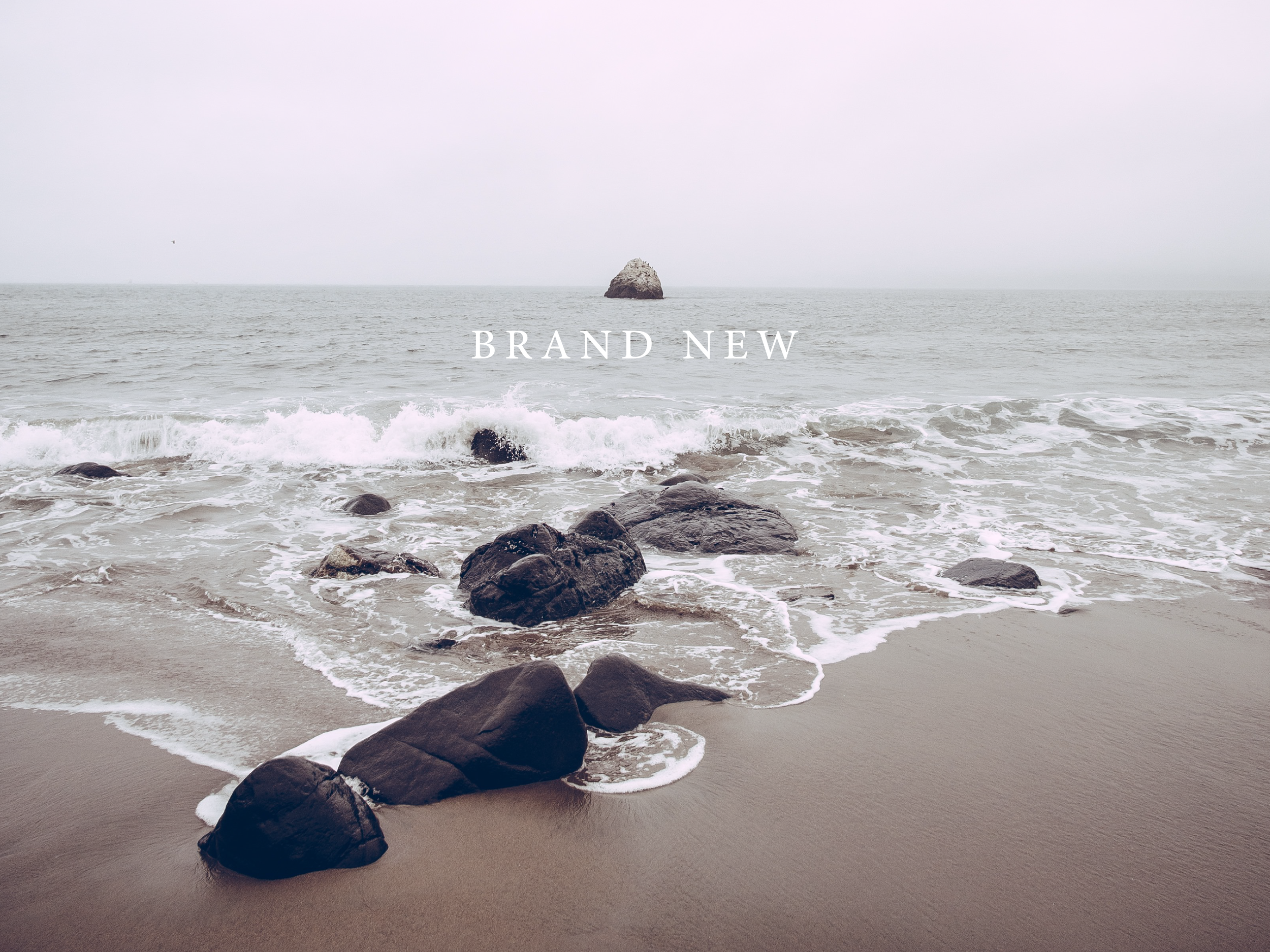 Brand New-01.png
