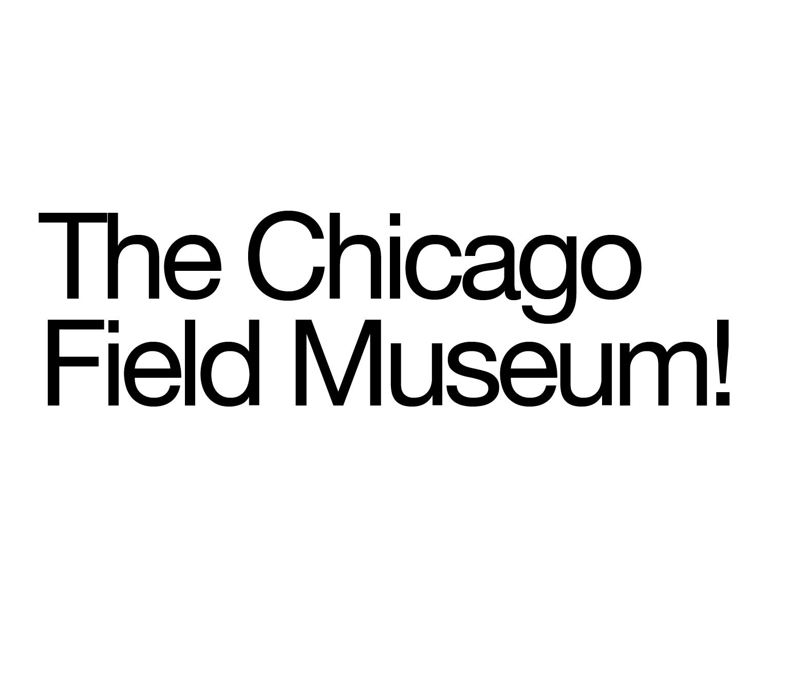 ChicagoField.jpg