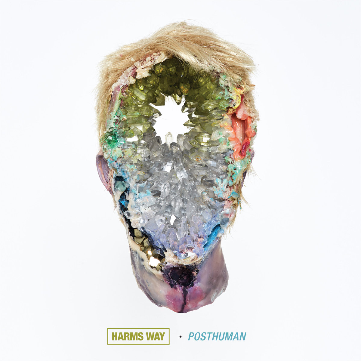 16. Harms Way - Posthuman - Full of aggresive riffs and breakdowns, although Harms Way certainly wave the 'bro-metal' flag high and proud, Posthuman never becomes monotonous and is rather multi-dimensional. Along with the face-pummeling in-your-face swagger, there is a vibrant noisy, industrial facet to Posthuman that is intriguing and edgy.