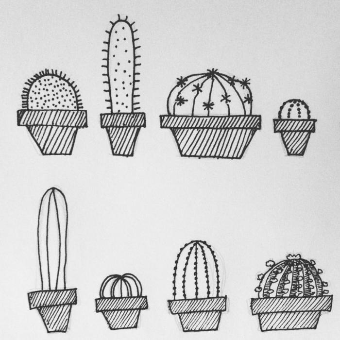 Cacti drawings.