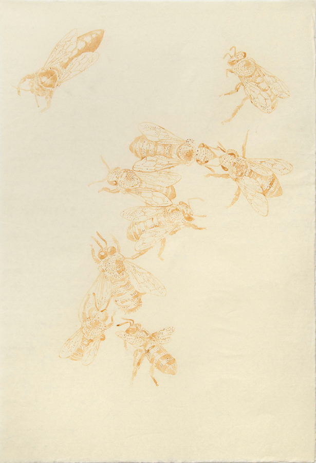 "Milk Bees  ©2002 Milk on Paper 39"" x  26"""