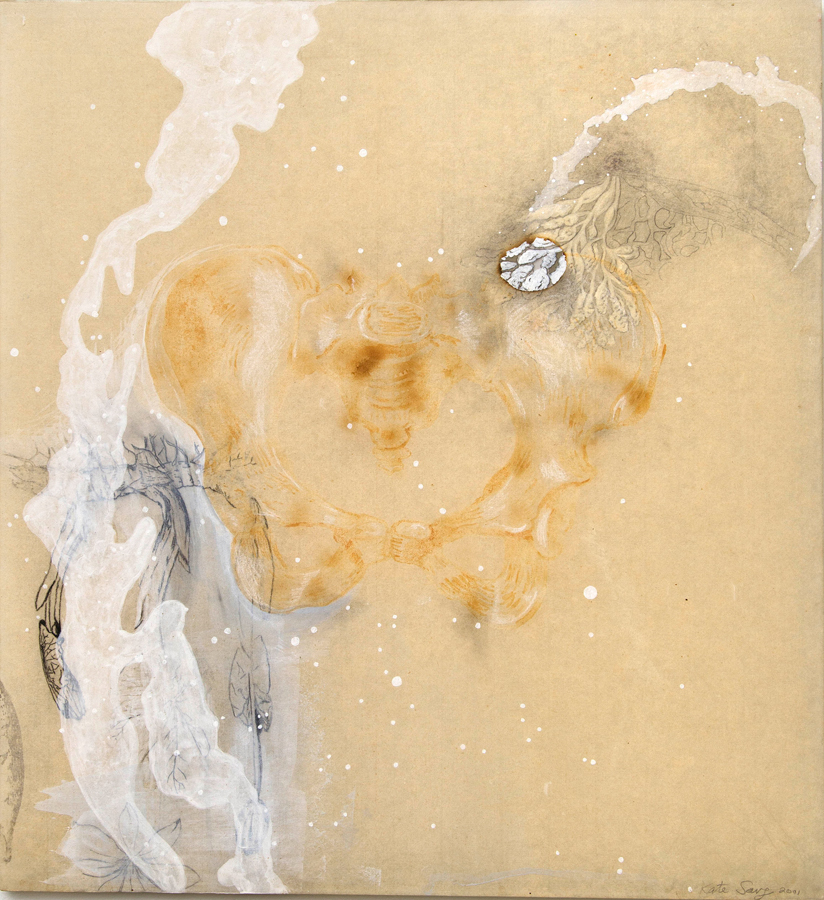 "Milk Pelvis  ©2001 Acrylic, Milk, Graphite and Transfer on paper and Acrylic Panel 22"" x  20"""