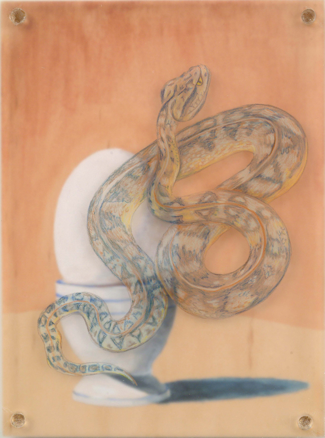 "Snake Egg  © 2003 Egg Tempera and Colored Pencil on Acrylic and Wood Panel 8"" x 6"""
