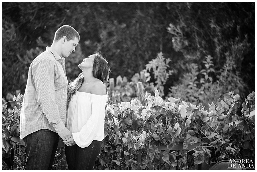 Central coast wedding Photographer__0014.jpg