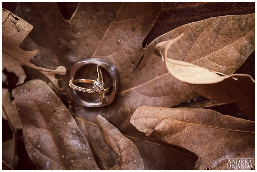 I love shooting engagement rings and wedding bands.