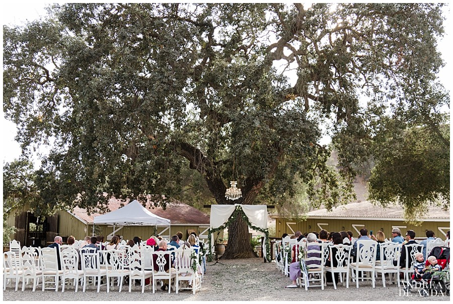 The ceremony site at Rancho San Antonio was to die for, the altar underneath an oak tree a crystal chandelier, mixed and match white vintage chairs and all their family and friends
