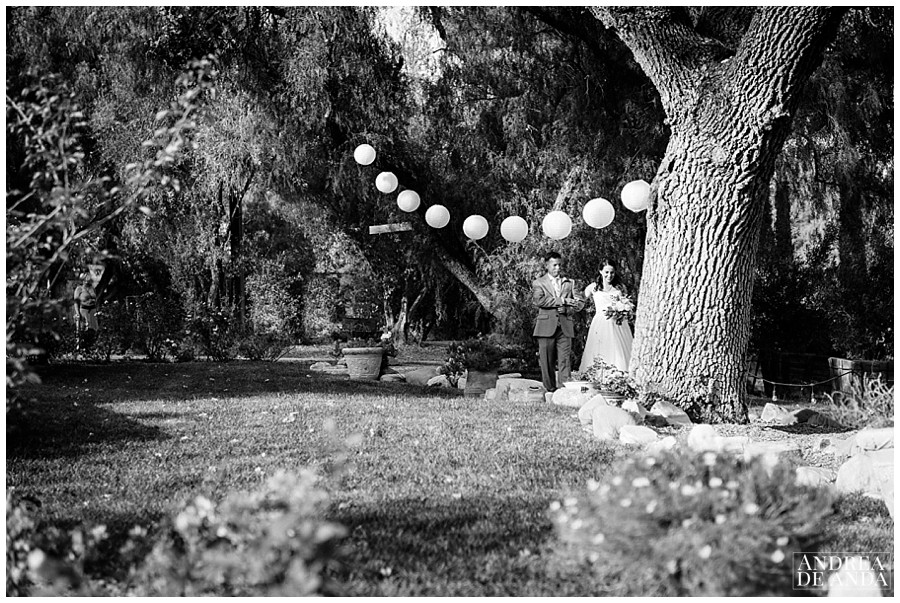 Bride walking down the aisle arms linked with her father at Rancho San Antonio, Chinese lanterns, oak trees and pepper trees leading the way !