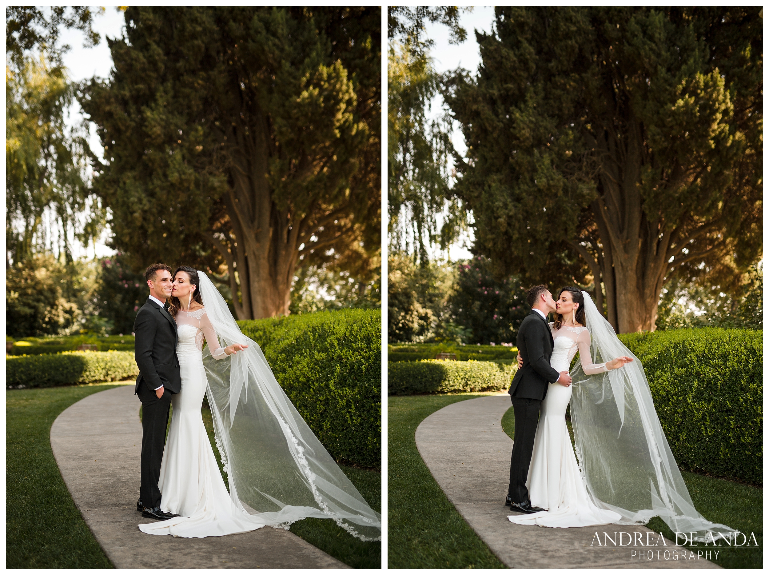 Park Winter Wedding by Andrea de Anda Photography__0013.jpg