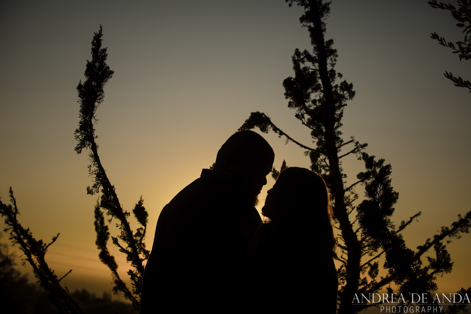 Evergreen-California-Engagement-session-Andrea-de-Anda-photography_-15.jpg