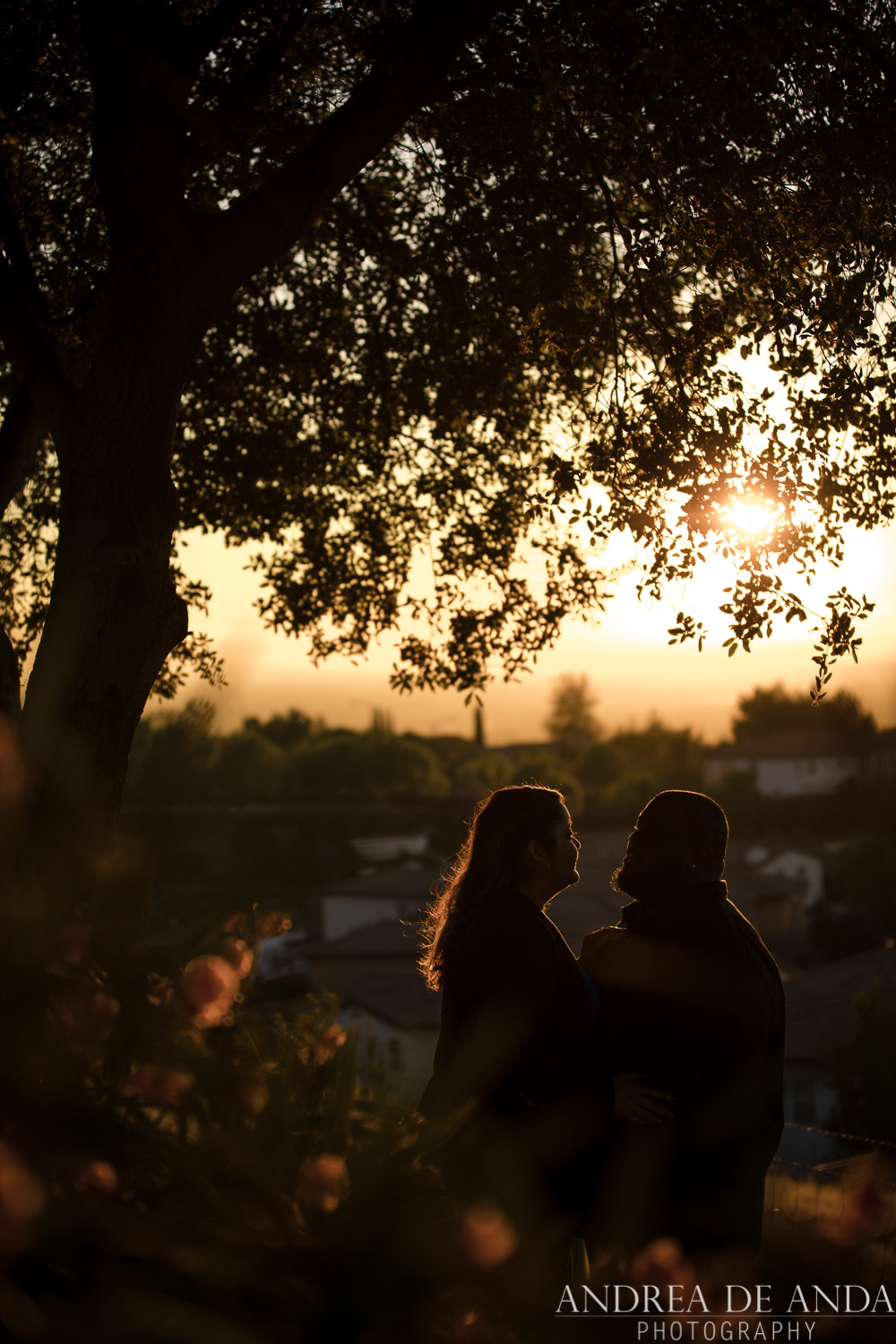 Evergreen-California-Engagement-session-Andrea-de-Anda-photography_-16.jpg