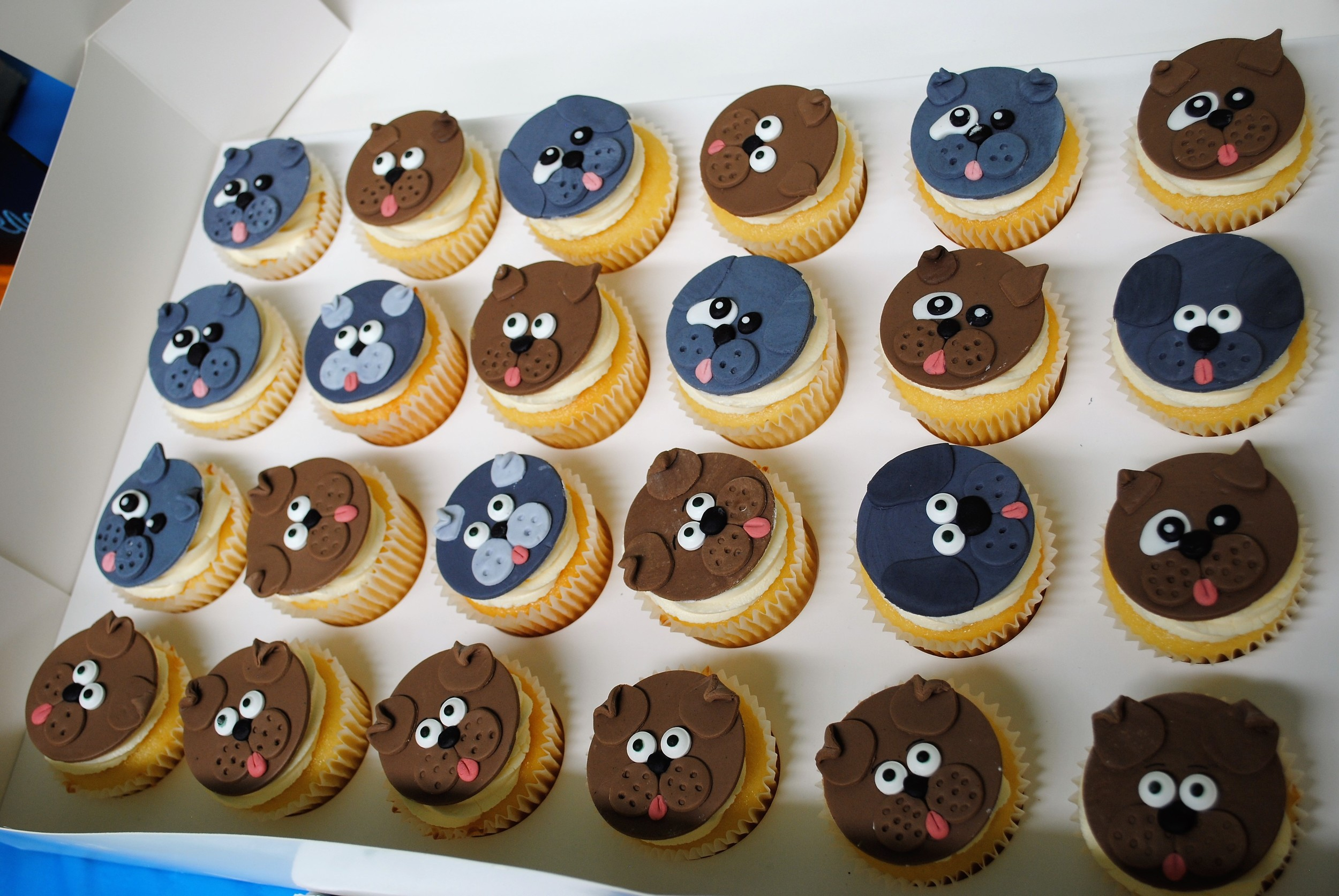Puppy cupcakes for the guests, but the puppies had thier own pupcakes to eat!