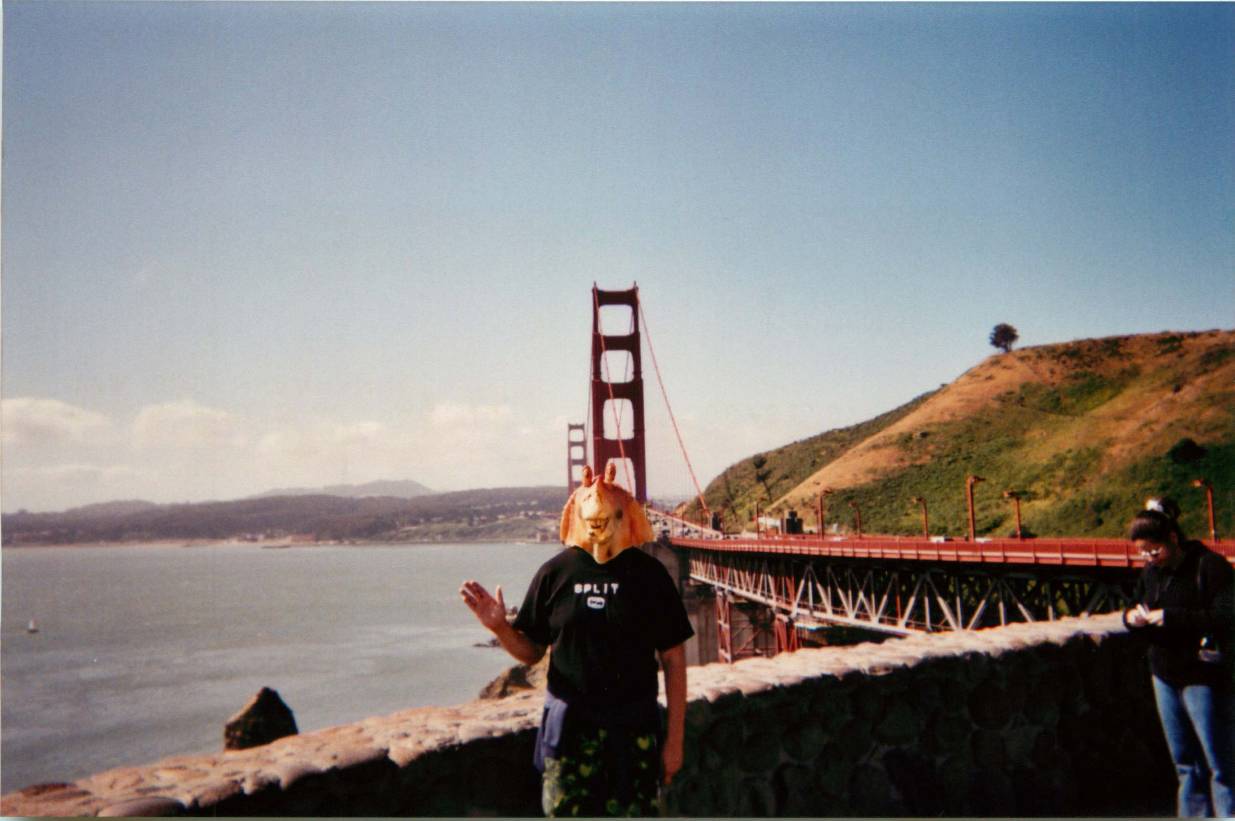 San Francisco, CA 5.jpg