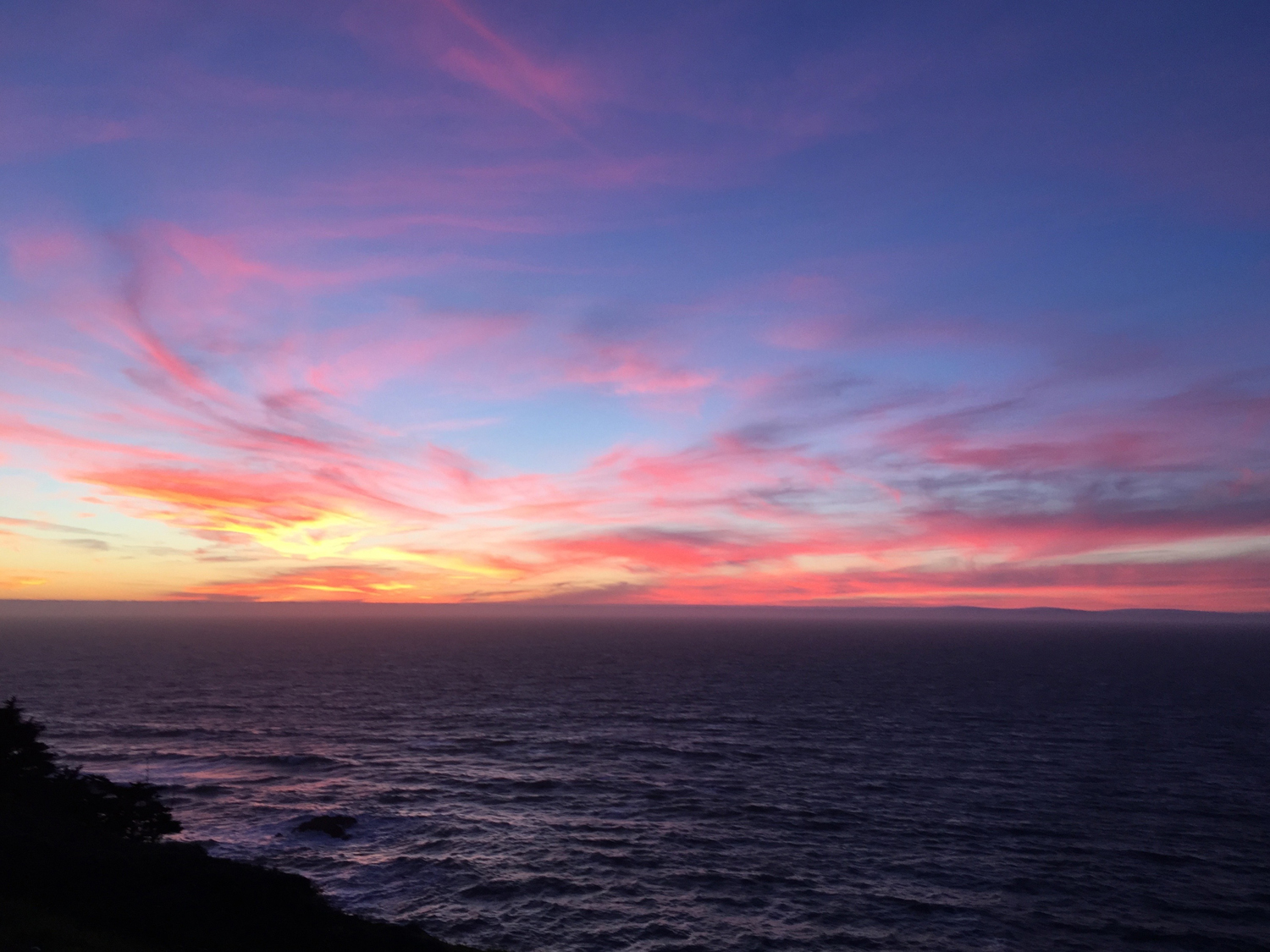 A hike on the Coastal Trail followed by a romantic Valentine's dinner from Chino's, along with the Sunday paper. (My favorite way to spend an evening.)