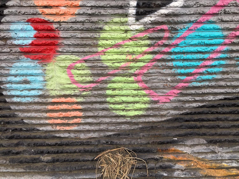 The sea wall at Quintara Street