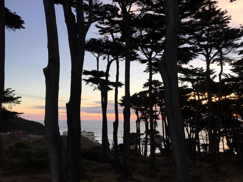 Coastal Trail  4:51 pm