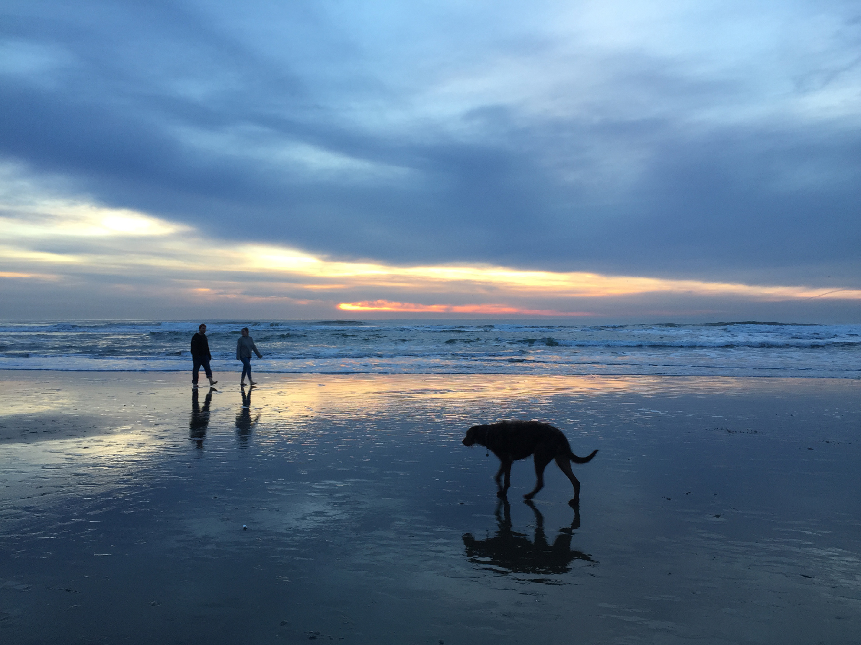Ocean Beach  5:00 pm