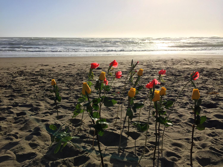 Ocean Beach  6:59 pm
