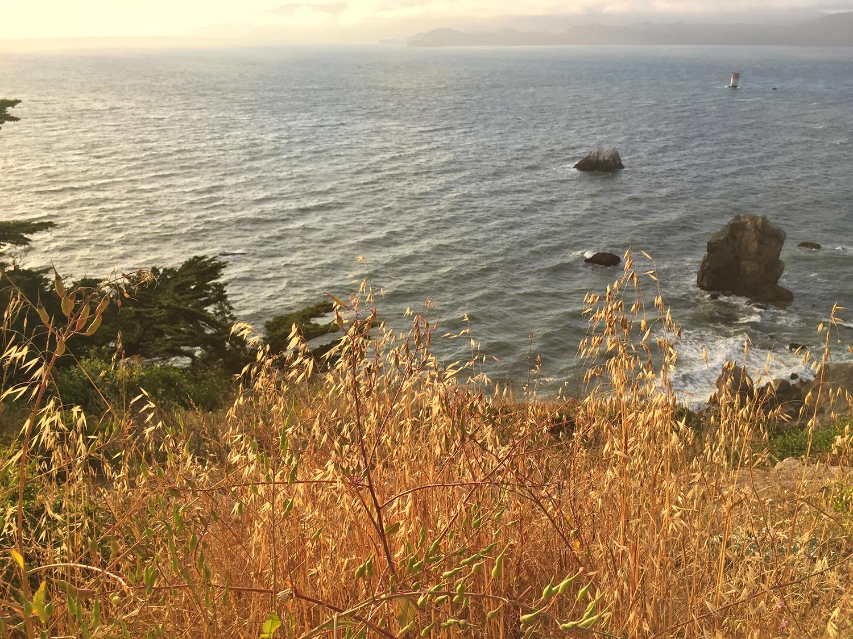 Coastal Trail  7:50 pm