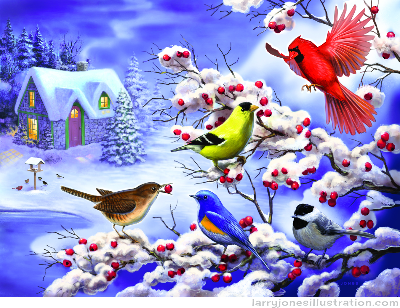 winter-birds-illustration