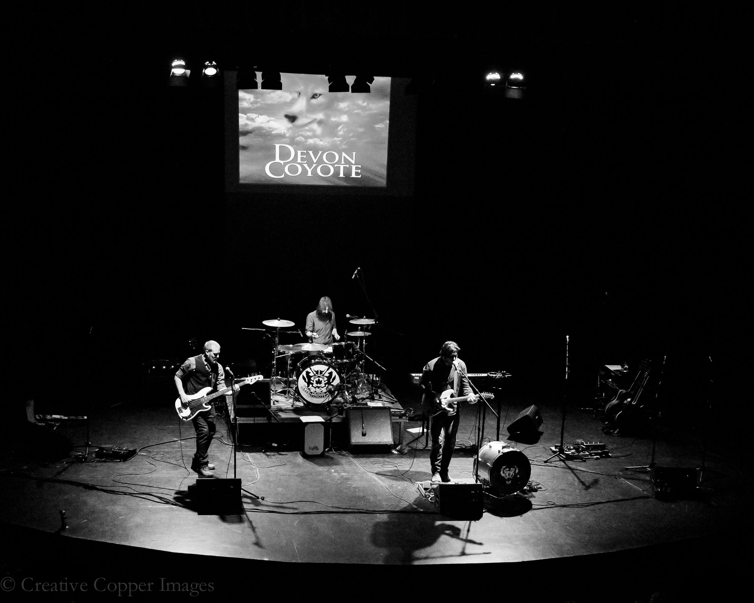 Devon Coyote Live.jpg
