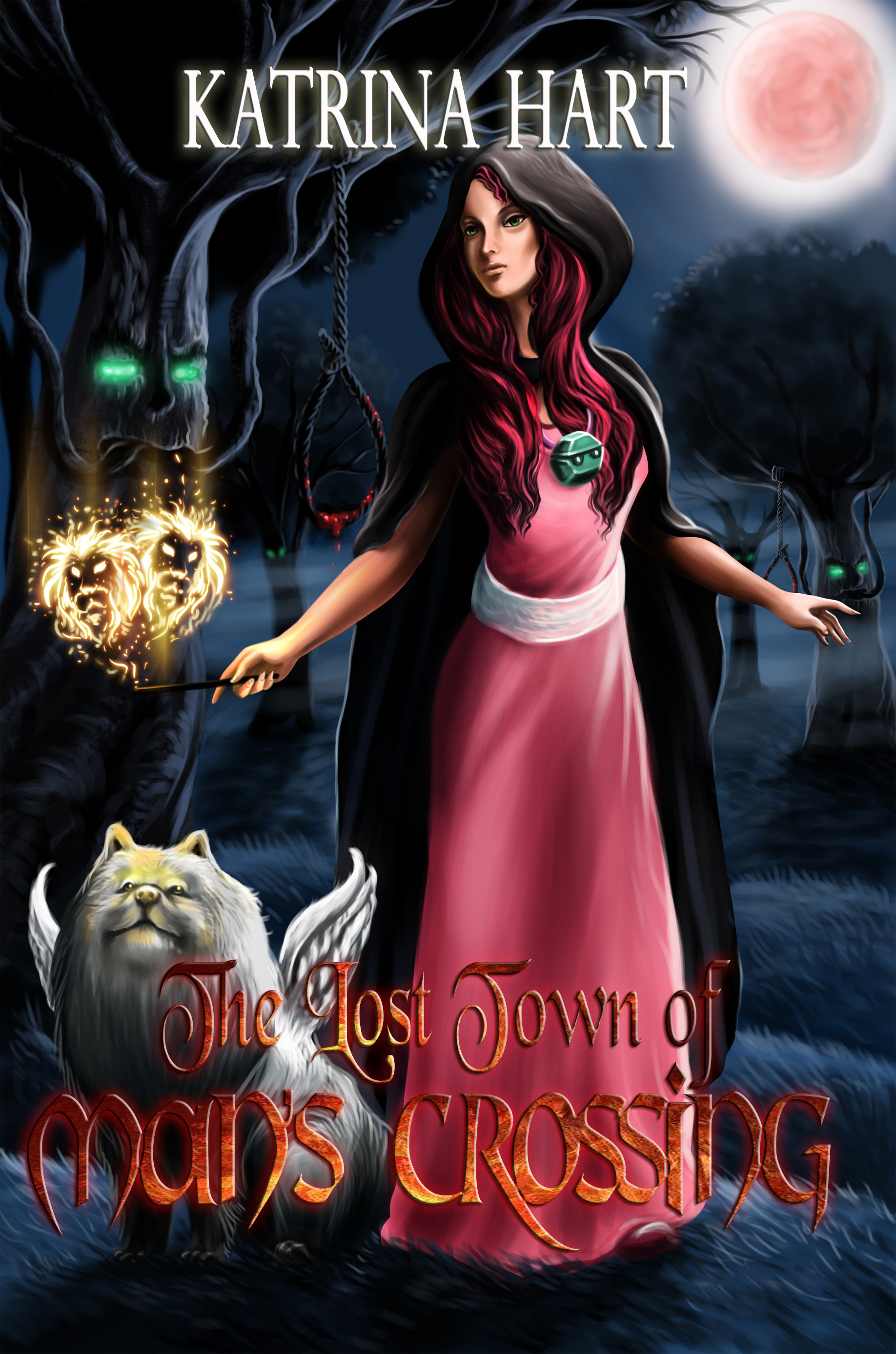 - After being shot, Suzy and her friend, Bill, are offered a second chance at life in The Lost Town Of Man's Crossing, a land to which the chosen few are transported by their personal Crossing Creatures. There, Suzy encounters the evil Cole, who is all-out to gain the highest power of the land.But Suzy comes from a magical family: her grandmother, Miss Hollow, founded a coven called Hollow-Wings, and her grandfather left her a secret, life-changing pouch. Soon, Cole craves that secret pouch more than anything.It's Suzy versus Cole – and one of them has met their match.