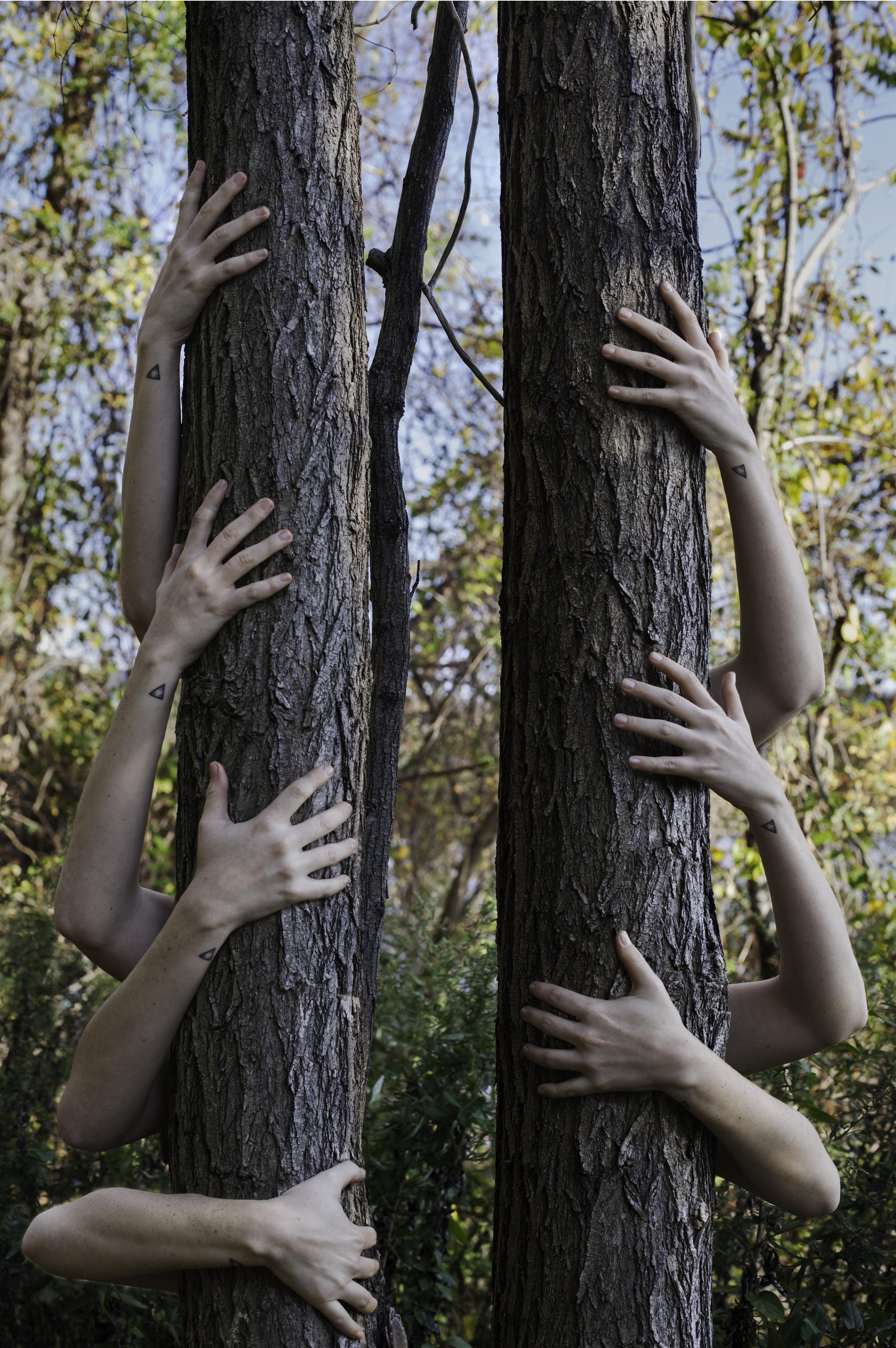Becoming a tree1.jpg