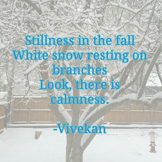 An original haiku for your Sunday reflections... 🙏🗻 Stillness in the fall White snow resting on branches Look, there is calmness. -@VivekanYogi