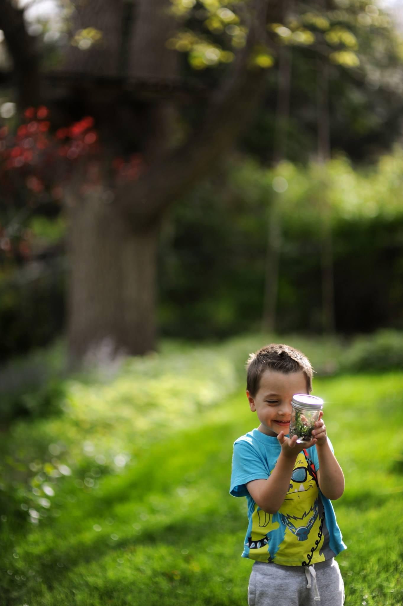 kid bug hunting