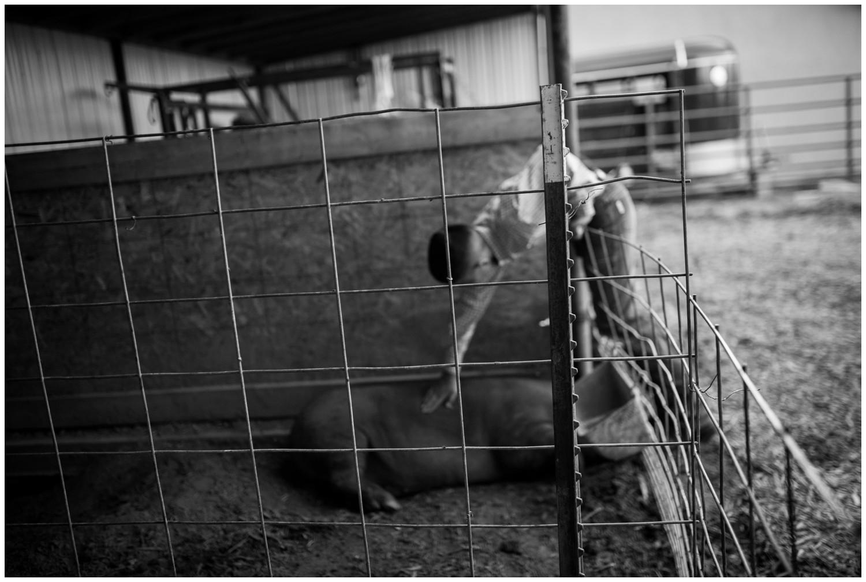 Colorado-lifestyle-farm-family-photography_0007.jpg