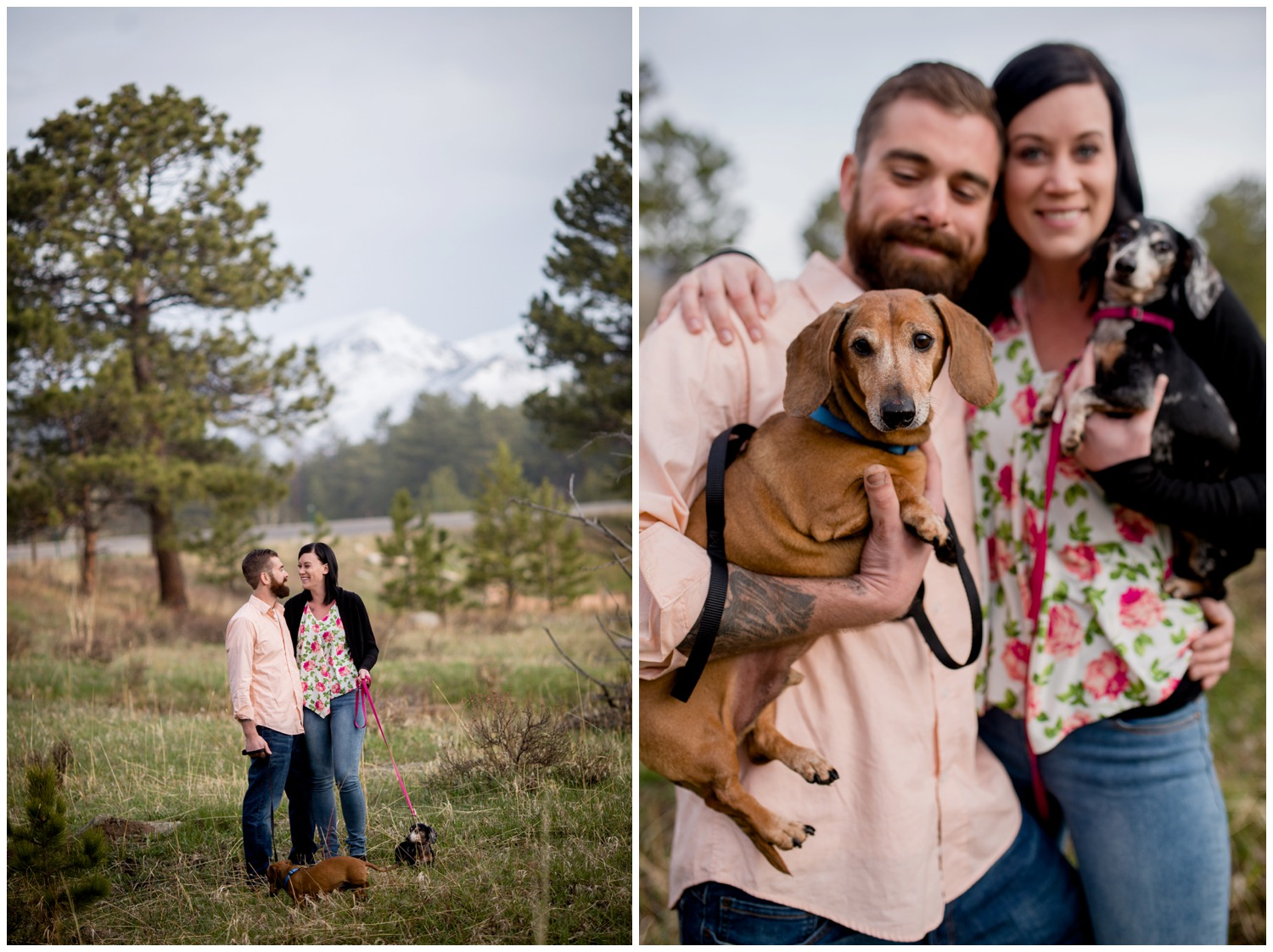 colorado mountain engagement photo with dogs