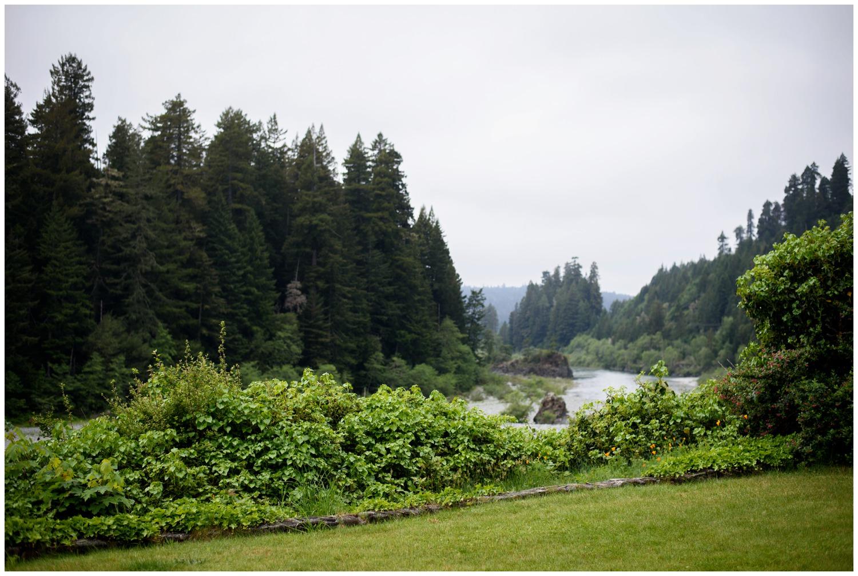 Redwood-Forest-destination-wedding-photography-_0001.jpg