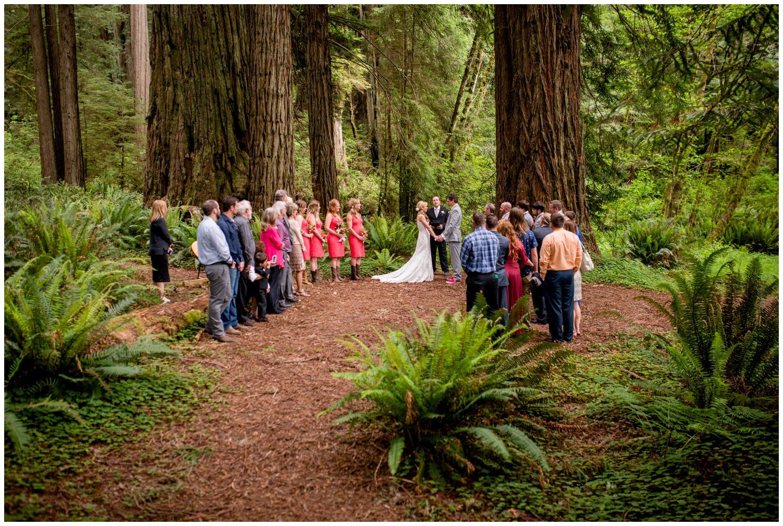 Redwood-Forest-destination-wedding-photography-_0053.jpg